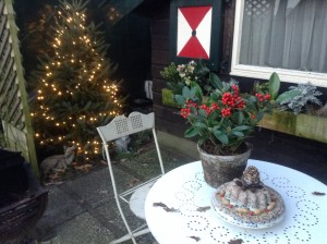Wij hebben de kerstdagen op Corduif doorgebracht. Zowel binnen als buiten was het huisje prachtig versierd. Samen met de dieren en de sfeerlichtjes was het een super huisje voor de kerstdagen.  Bedankt, Leonie en Peter